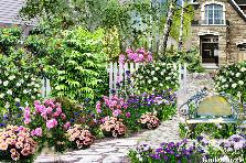 Projekt ogrodu:trochę kwitnącej jesieni...
