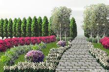 Projekt ogrodu:Contrast Garden