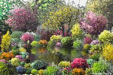 Projekt ogrodu:tajemniczy ogród