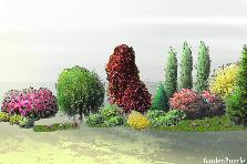 Projekt ogrodu:rabata na dziedzincu
