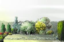 Projekt ogrodu:2016 02 09/widd1