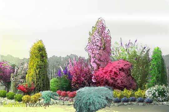 Projekt ogrodu:rabata przy płocie  - Wiosna