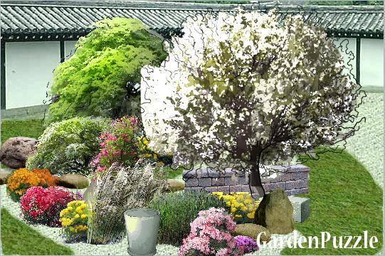 Projekt ogrodu azalie magnolia wiśnia klon wiosna