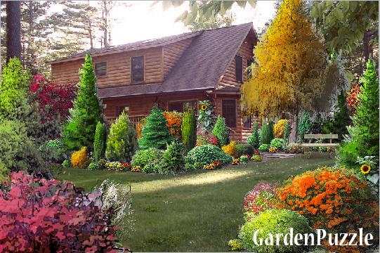 Ogród leśny - GardenPuzzle - projektowanie ogrodów w przeglądarce