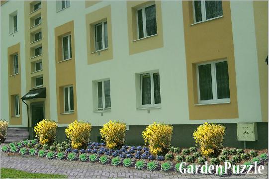 Projekt ogrodu:Zachodnia strona - Wiosna