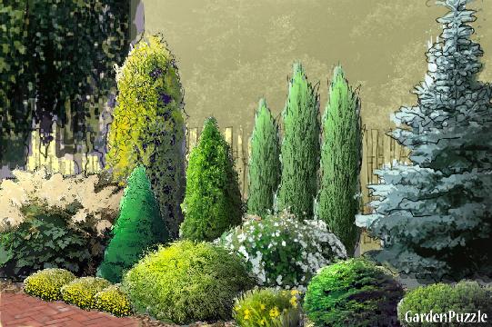 Projekt ogrodu:rabata pod płotem -, - Lato
