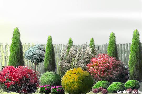 Projekt ogrodu:oogrod przydomowy - Wiosna