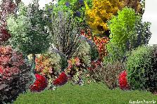 Projekt ogrodu:jesień