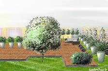 Projekt ogrodu:ogrod