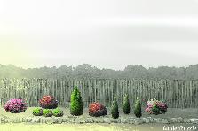 Projekt ogrodu:front