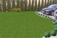 Projekt ogrodu:Bania trawy 1