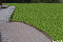 Projekt ogrodu:bania lawenda 1