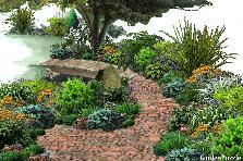 Projekt ogrodu:przy strumyku