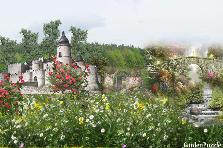 Projekt ogrodu:taki groch z kapustą