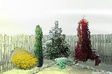 Projekt ogrodu:rog