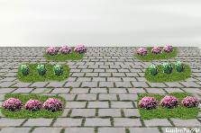 Projekt ogrodu:donice