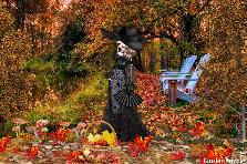 Projekt ogrodu:   Czarna Dama