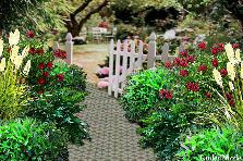 Projekt ogrodu:witam serdecznie...