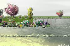 Projekt ogrodu:działka 2