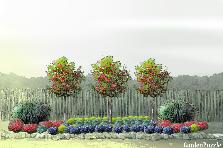 Projekt ogrodu:avon76