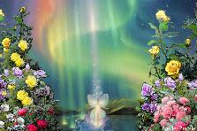 Projekt ogrodu:Olu, pokój Ci wieczny!