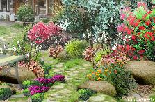 Projekt ogrodu:...zapraszam...