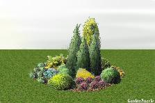Projekt ogrodu:zimozielona