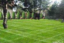 Projekt ogrodu:ogród 2222