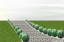 Projekt ogrodu:lawendowa aleja