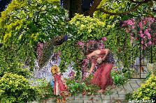 Projekt ogrodu:-lato..